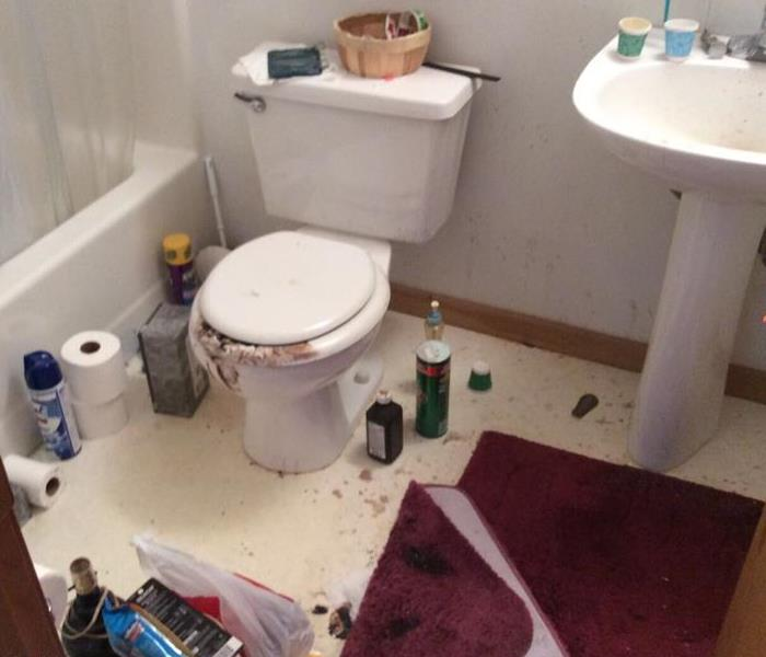 Accident Cleanup in Bathroom Before