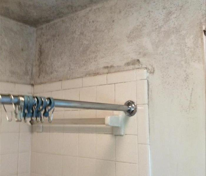 Above a bathroom shower discoloration and mold