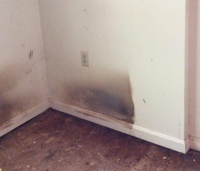 Neglected home needed deep cleaning by SERVPRO of Chambersburg.