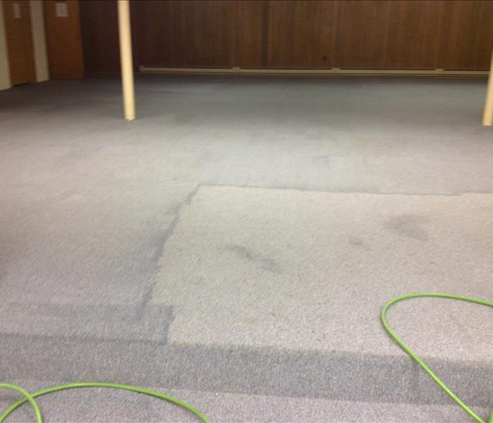 During Carpet Cleaning