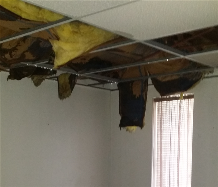 Water Damage, Wet Ceilings in Greencastle PA