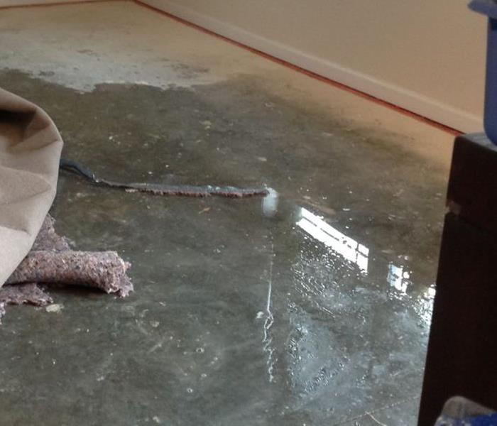 How much water is under the carpet?