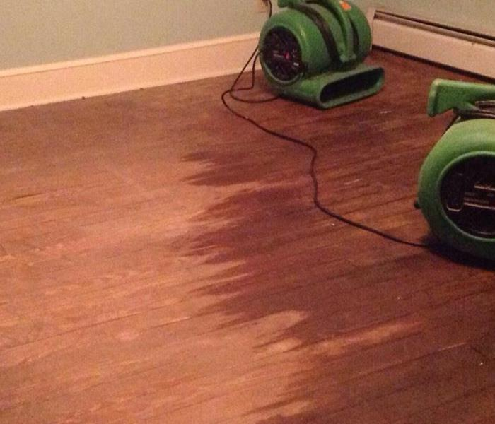 Water Damage Here's Why Professional Water Removal Is More Effective Than DIY Methods