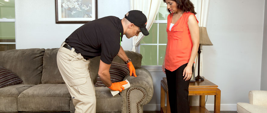 Chambersburg, PA carpet upholstery cleaning
